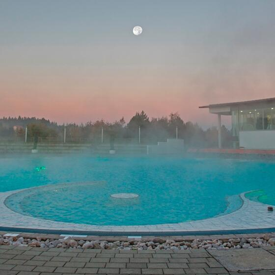 Spa hotel with panoramic outdoor pool in Upper Austria